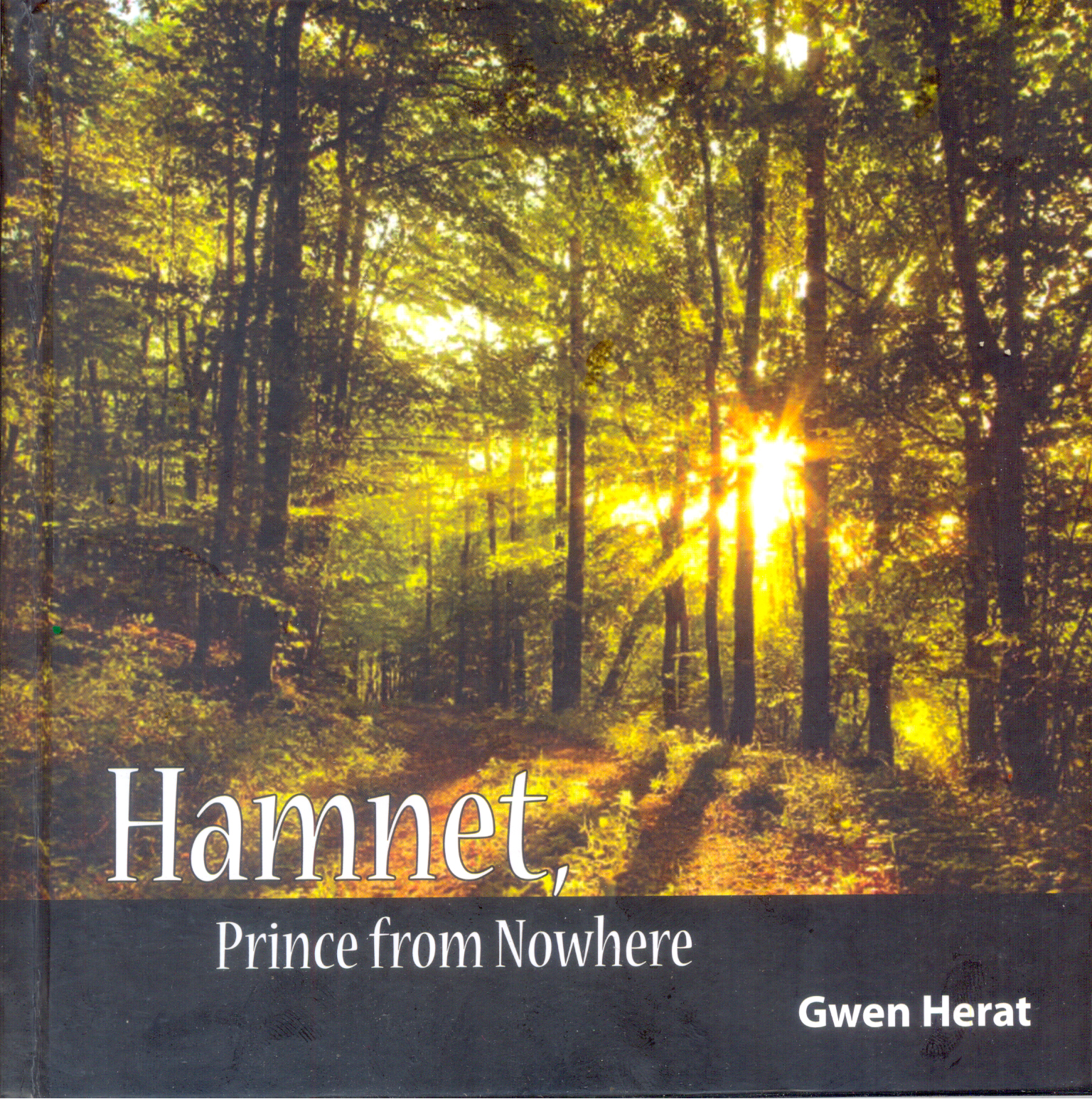 Hamnet Prince From Nowhere